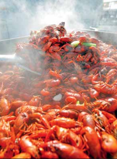 New Orleans Restaurant Guide Crawfish Boil